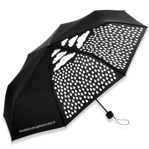 http://www.boutique-fondationbrigittebardot.fr/153-582-thickbox/parapluie-colormagic.jpg